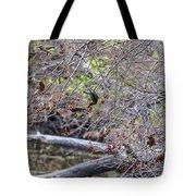 Cedar Waxwings Feeding Tote Bag