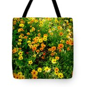 Celebration Of Yellows And Oranges Study 4 Tote Bag