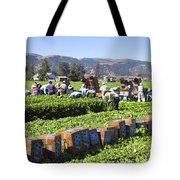 Celery Harvest Tote Bag