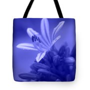 Celestial Love Tote Bag