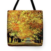 Cemetery Alley Tote Bag