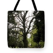 Cemetery Trees 2 Tote Bag