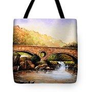 Cenarth Bridge And Falls Tote Bag