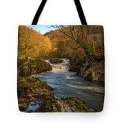 Cenarth Falls Tote Bag