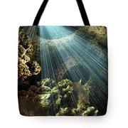 Cenote II Tote Bag