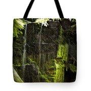 Centennial Falls Tote Bag