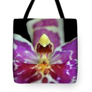 Centerpiece - Purple Orchid Macro Tote Bag