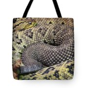 Central American Rattlesnakee Tote Bag
