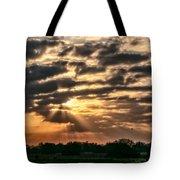 Central Florida Sunrise Tote Bag