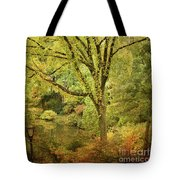 Central Park In Autumn Texture 5 Tote Bag