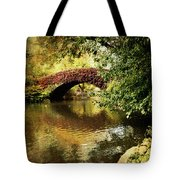 Central Park In Autumn Texture 6 Tote Bag