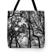 Central Park In Black And White Tote Bag
