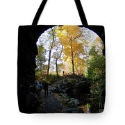 Central Park North Woods In The Fall Tote Bag