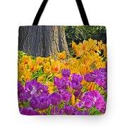 Central Park Tulip Display Tote Bag