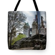 Central Park Views  Tote Bag