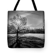 Central Park's Sheep Meadow - Bw Tote Bag