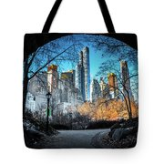 Central View Tote Bag