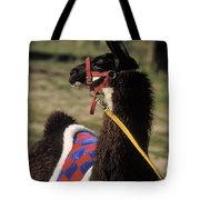 Chaco Tote Bag