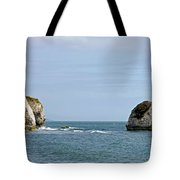 Chalk Cliffs At Freshwater Bay Tote Bag
