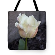 Chalky Tote Bag