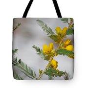 Chamaecrista Fasciculata Sleeping Plant Partridge Pea Tote Bag