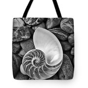 Chambered Nautilus Shell  On River Stones Tote Bag