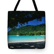 Champagne Beach Tote Bag