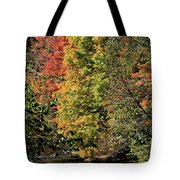 Changing Colours Of The Fall Tote Bag