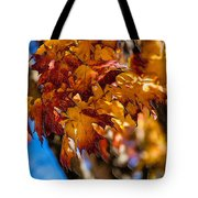 Changing Maples Tote Bag
