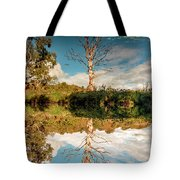Changing The Seasons Tote Bag