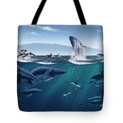 Channel Islands Whales Tote Bag