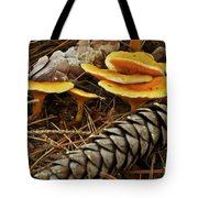 Chanterell Mushrooms  Tote Bag
