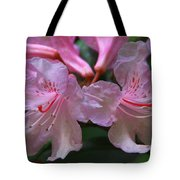 Chapmans Rhododendron Tote Bag
