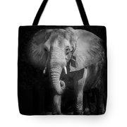 Charging Elephant Tote Bag by Ken Barrett