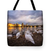 Charles Bridge, Prague With Swans Tote Bag