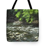 Charles On The Rocks Tote Bag