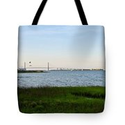 Charleston South Carolina Waterfront Park During Sunset Tote Bag