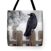Charming Corvid Tote Bag