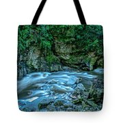 Charming Creek Walkway 1 Tote Bag