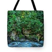 Charming Creek Walkway 2 Tote Bag