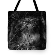 Chassahowitzka Number Four Tote Bag