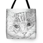 Chat Somnolant Resting Cat Tote Bag