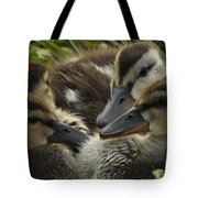 Chatter Tote Bag