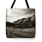 Chautauqua Night Path 2 Tote Bag