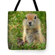 Check Out My Good Side Tote Bag