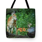 Checking Out The Squirrel Tote Bag