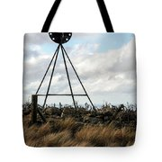 Checking The Weather Tote Bag
