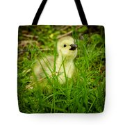 Cheeky Duckling  Tote Bag