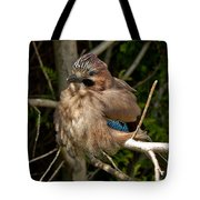 Cheeky Jay Tote Bag