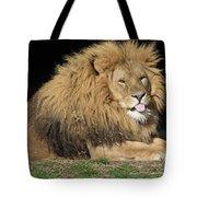 Cheeky Lion Tote Bag